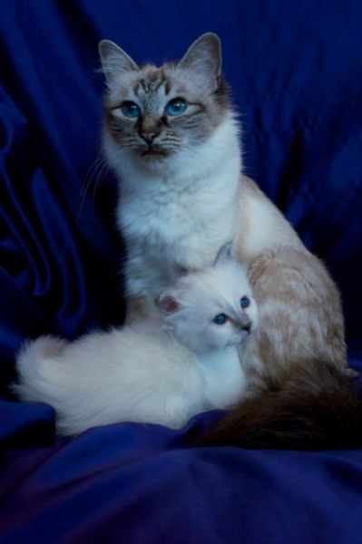 The proud mother